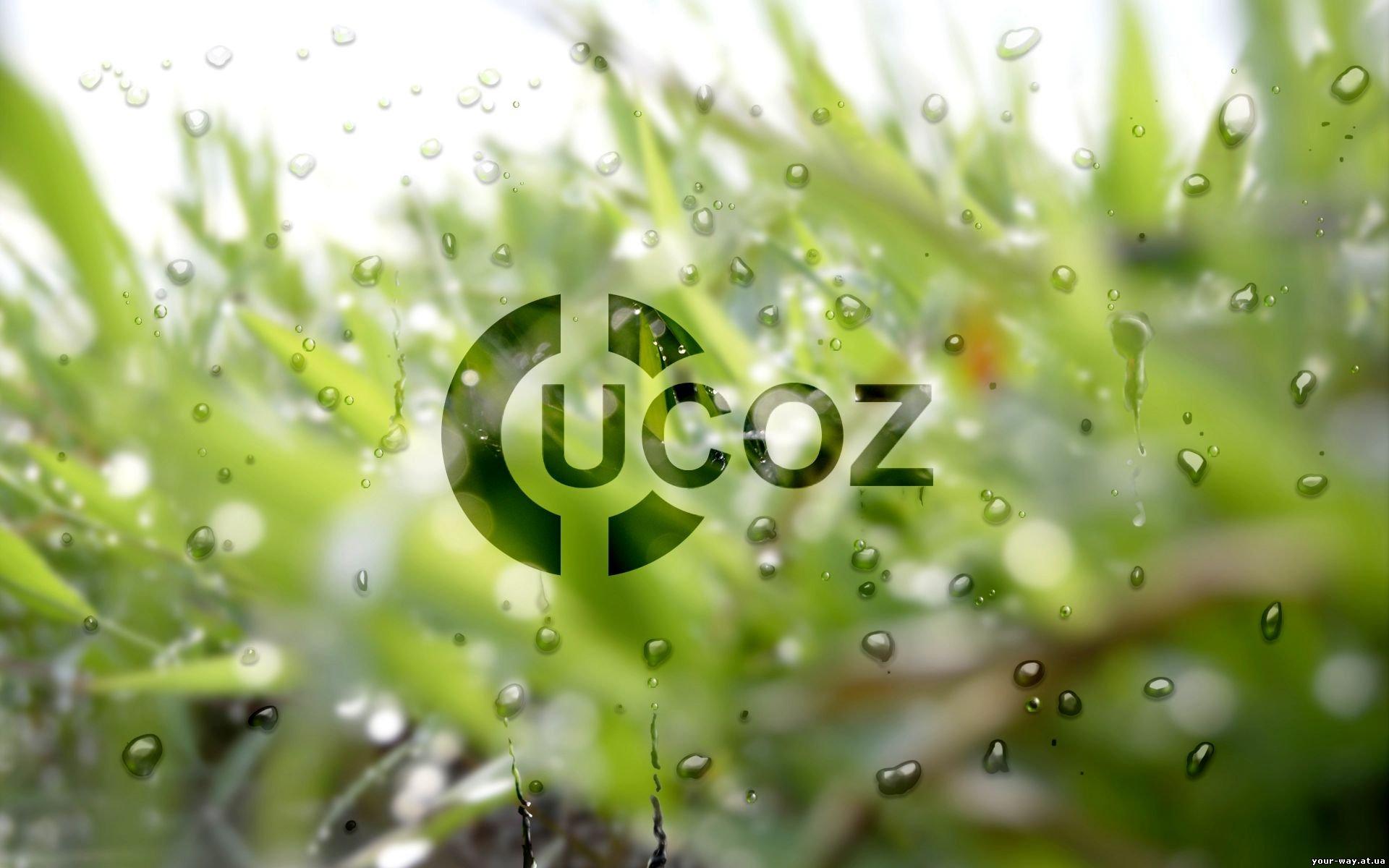 Бегущая строка для Ucoz сайтов